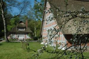 Haus Tulipan im Schluh